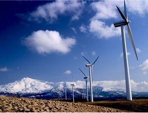 前三季风电并网容量达1.76亿千瓦 发电量同比增速超20%